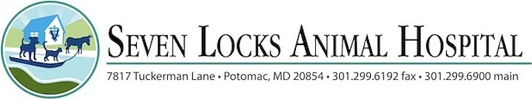 Seven Locks Animal Hospital - Veterinarian serving the Montgomery County communities of Potomac, Bethesda,  Rockville and Silver Spring MD. Wecome to our site!